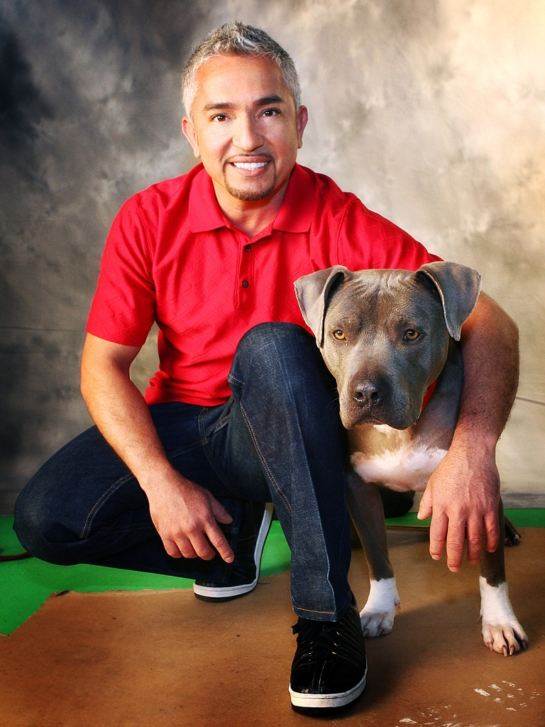 "cesar millan ""dog whisperer"" cesar millan is under investigation for possible animal cruelty stemming from an incident filmed for his ""cesar 911"" tv show, authorities said."